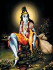 Gopala Krishna Plate43